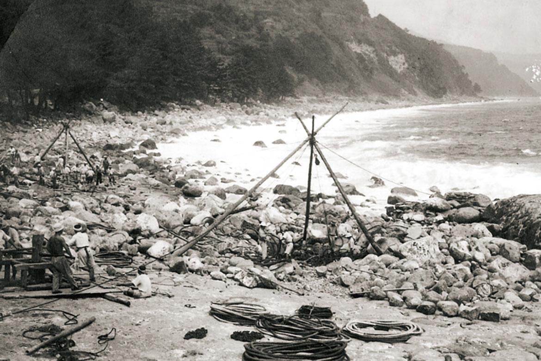 北川の自然