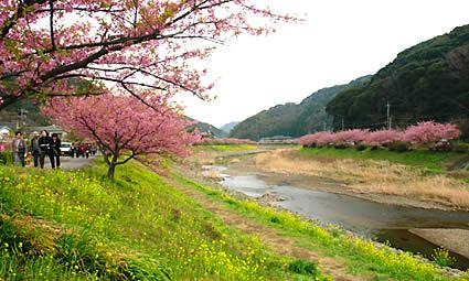 のどかで美しい青野川