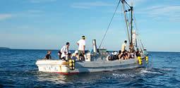 波を切って進む漁船